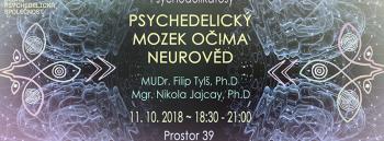 Psychedelikatesy: Psychedelický mozek a vědomí očima neurověd